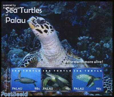 Sea turtles 3v m/s
